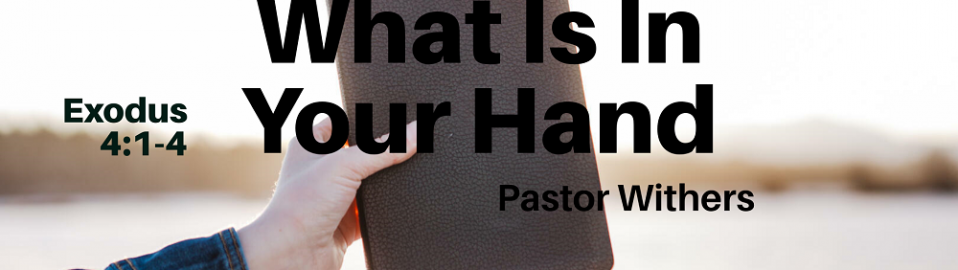 What Is In Your Hand