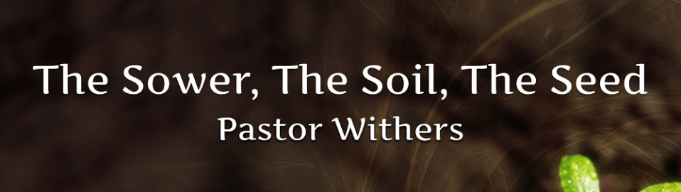The Sower, The Soil, The Seed